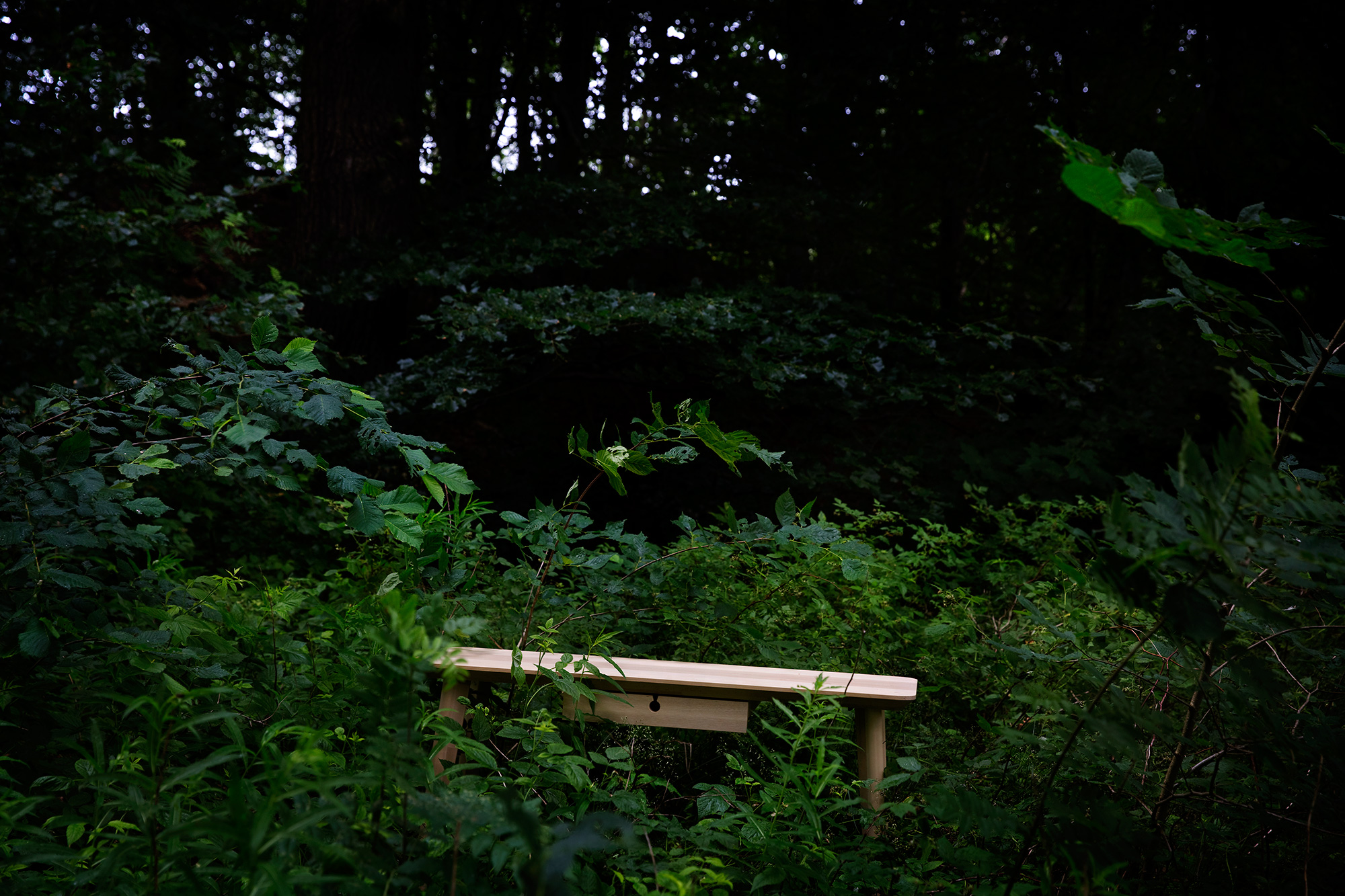 A table in light wood placed in deep foliage on a green, lush hillside.