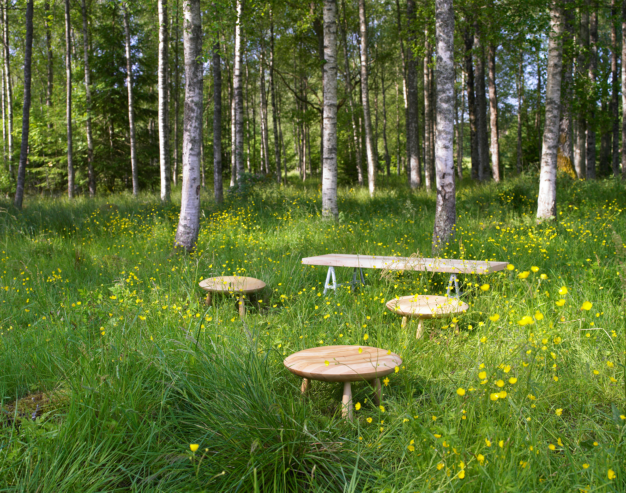 Photo of wooden tables and a wooden bench on the grass in a lush green forest clearing.